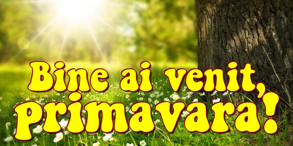 Cele mai apreciate felicitari de Primavara - Bine ai venit, primavara!