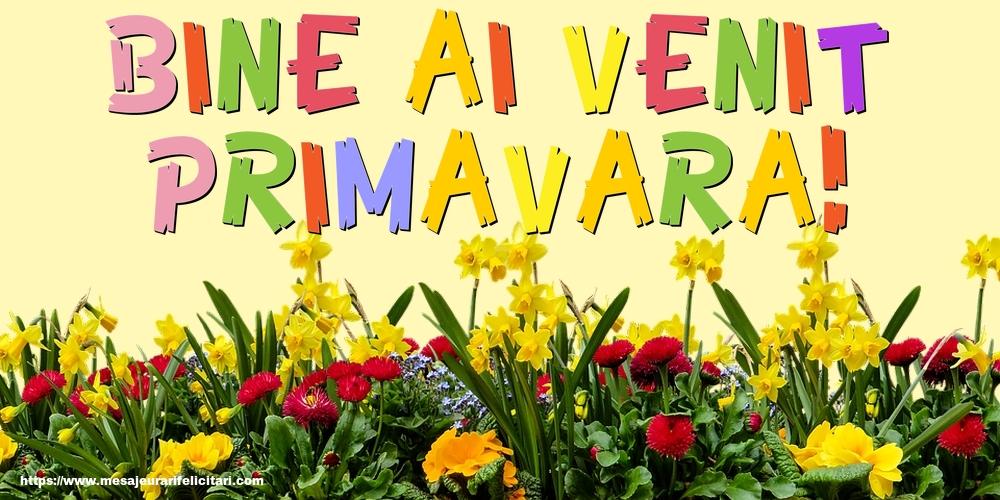 Felicitari de Primavara - Bine ai venit, primavara!