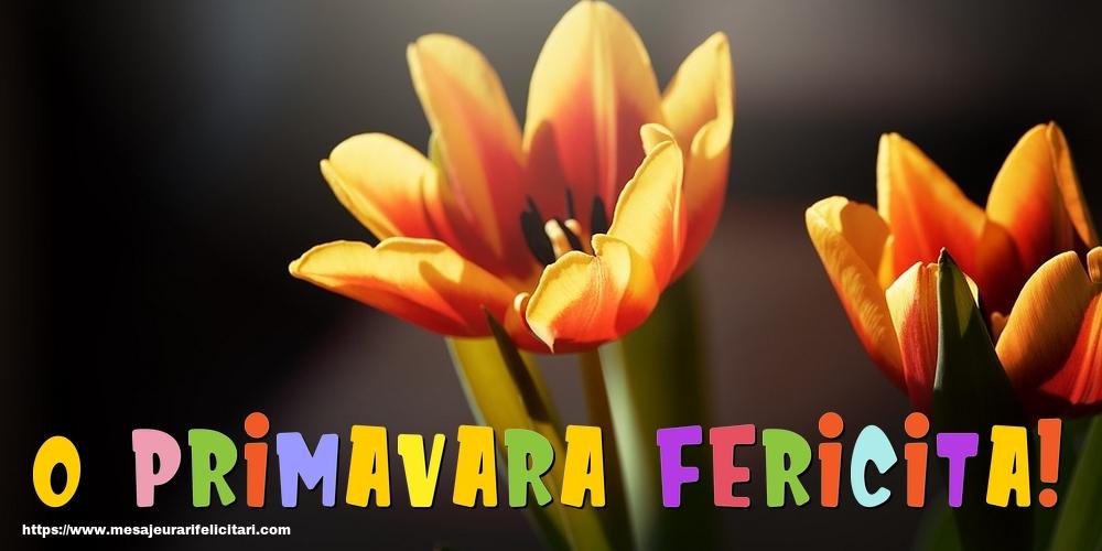 Felicitari de Primavara - O primavara fericita!