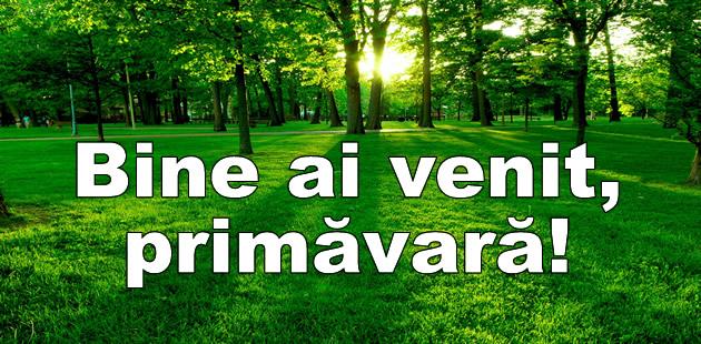 Mesaje Felicitari personalizate de Primavara