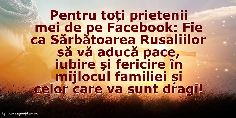Pentru toți prietenii mei de pe Facebook