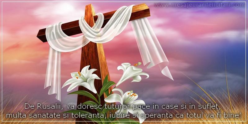 De Rusalii, va doresc tuturor pace in case si in suflet,  multa sanatate si toleranta, iubire si speranta ca totul va fi bine!