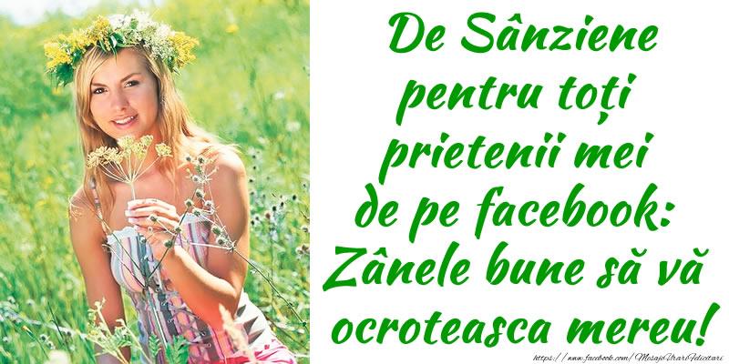 Sanziene De Sânziene pentru toți prietenii mei de pe facebook: Zânele bune să vă  ocroteasca mereu!