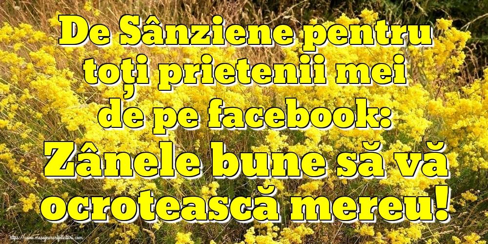 Cele mai apreciate felicitari de Sanziene - De Sânziene pentru toți prietenii mei de pe facebook: Zânele bune să vă ocrotească mereu!