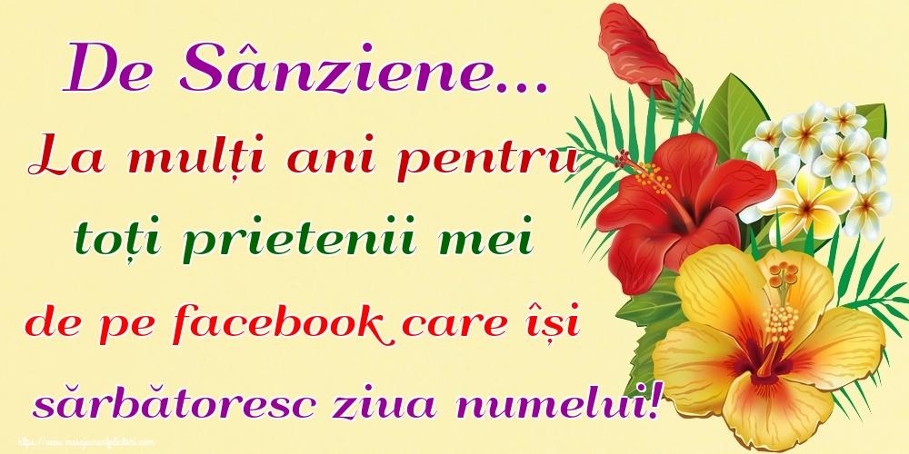 Felicitari de Sanziene - De Sânziene... La mulți ani pentru toți prietenii mei de pe facebook care își sărbătoresc ziua numelui!