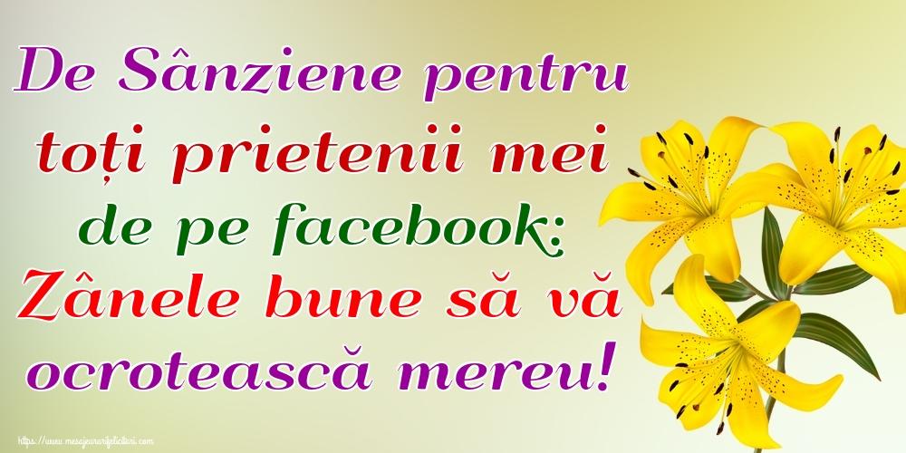 Felicitari de Sanziene - De Sânziene pentru toți prietenii mei de pe facebook: Zânele bune să vă ocrotească mereu!