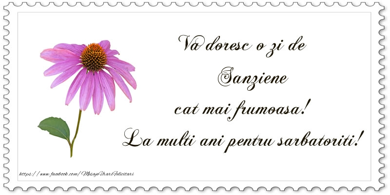 Felicitari de Sanziene - Va doresc o zi de Sanziene cat mai frumoasa! La multi ani pentru sarbatoriti! - mesajeurarifelicitari.com