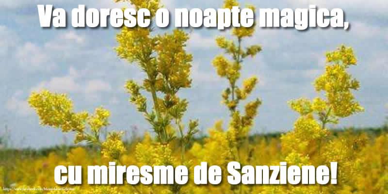 Sanziene Va doresc o noapte magica, cu miresme de Sanziene!