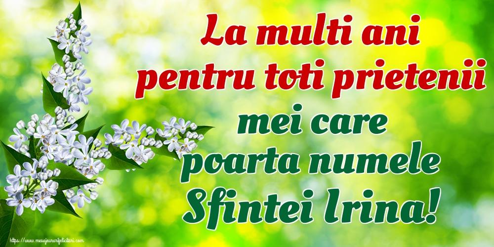 Felicitari de Sfanta Irina - La multi ani pentru toti prietenii mei care poarta numele Sfintei Irina!