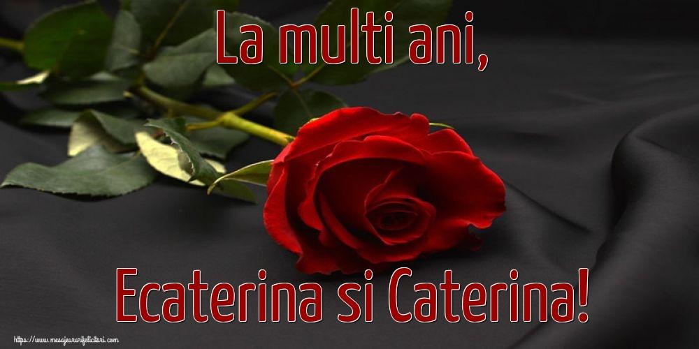 Felicitari de Sfanta Ecaterina - La multi ani, Ecaterina si Caterina! - mesajeurarifelicitari.com
