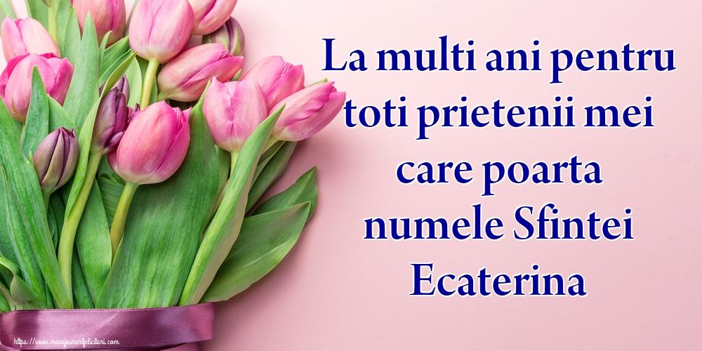 Felicitari de Sfanta Ecaterina - La multi ani pentru toti prietenii mei care poarta numele Sfintei Ecaterina