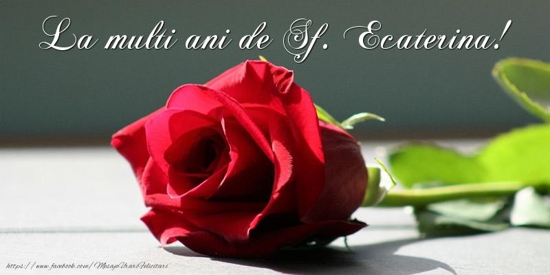 La multi ani de Sf. Ecaterina!