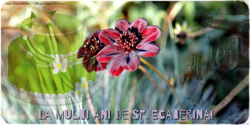 Felicitari de Sfanta Ecaterina - La multi ani de Sf. Ecaterina! - mesajeurarifelicitari.com