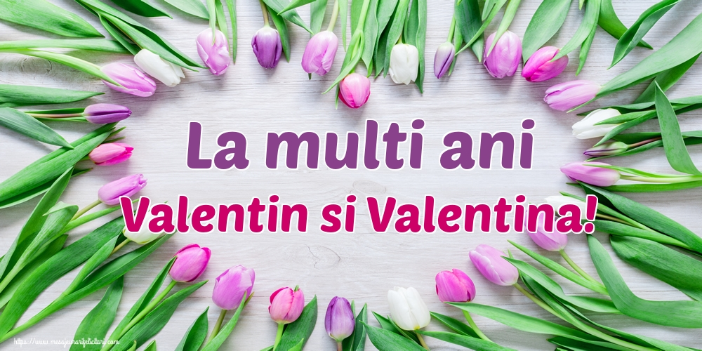 Felicitari de Sfantul Valentin - La multi ani Valentin si Valentina!