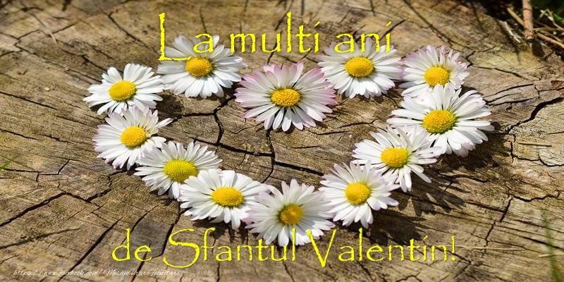 La multi ani de Sfantul Valentin!