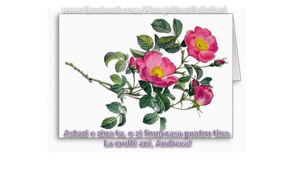 Felicitari de Sfantul Andrei - Astazi e ziua ta, e o zi frumoasa pentru tine La multi ani, Andreea!