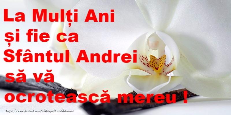 Felicitari de Sfantul Andrei - La multi ani de sfantul Andrei!
