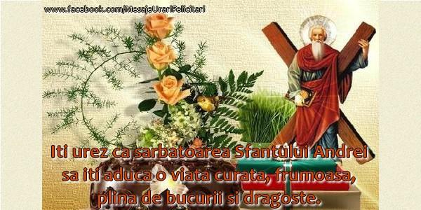 Cele mai apreciate felicitari de Sfantul Andrei - Iti urez ca sarbatoarea Sfantului Andrei sa iti aduca o viata curata, frumoasa plina de bucurii si dragoste!