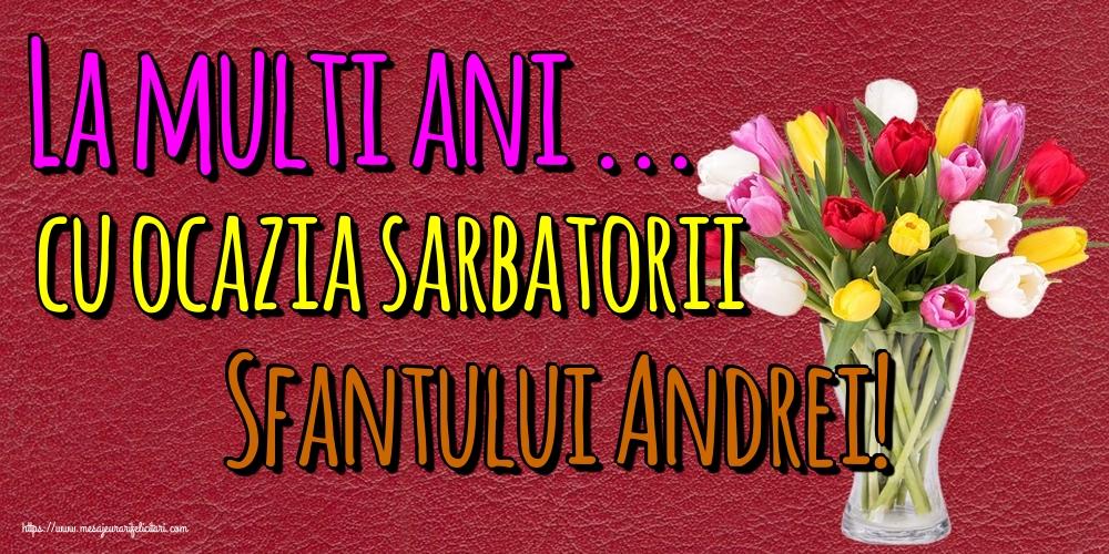 Felicitari de Sfantul Andrei - La multi ani ... cu ocazia sarbatorii Sfantului Andrei!