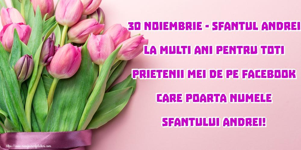 Cele mai apreciate felicitari de Sfantul Andrei - 30 Noiembrie - Sfantul Andrei La multi ani pentru toti prietenii mei de pe facebook care poarta numele Sfantului Andrei!
