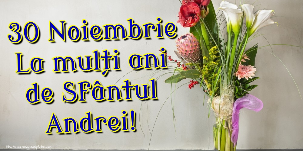 Felicitari de Sfantul Andrei - 30 Noiembrie La mulți ani de Sfântul Andrei!