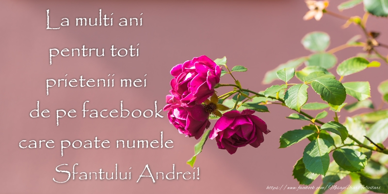 Cele mai apreciate felicitari de Sfantul Andrei - La multi ani pentru toti prietenii mei de pe facebook care poate numele Sfantului Andrei!