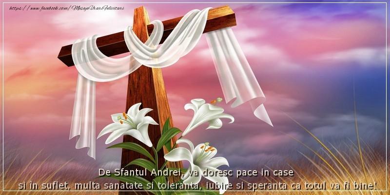 Felicitari de Sfantul Andrei - De Sfantul Andrei, va doresc pace in case si in suflet, multa sanatate si toleranta, iubire si speranta ca totul va fi bine!