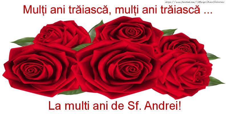 Cele mai apreciate felicitari de Sfantul Andrei - Multi ani traiasca, multi ani traiasca ... La multi ani de Sf. Andrei!