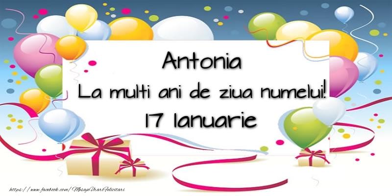 Sfantul Antonie cel Mare Antonia, La multi ani de ziua numelui! 17 Ianuarie