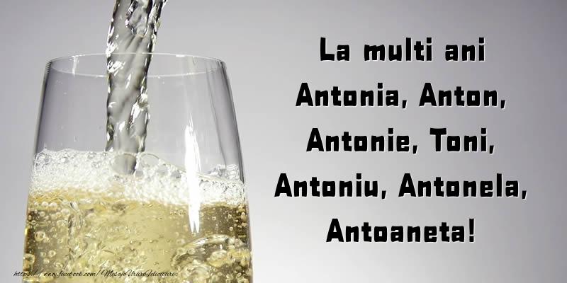 Cele mai apreciate felicitari de Sfantul Antonie cel Mare - La multi ani Antonia, Anton, Antonie, Toni, Antoniu, Antonela, Antoaneta!