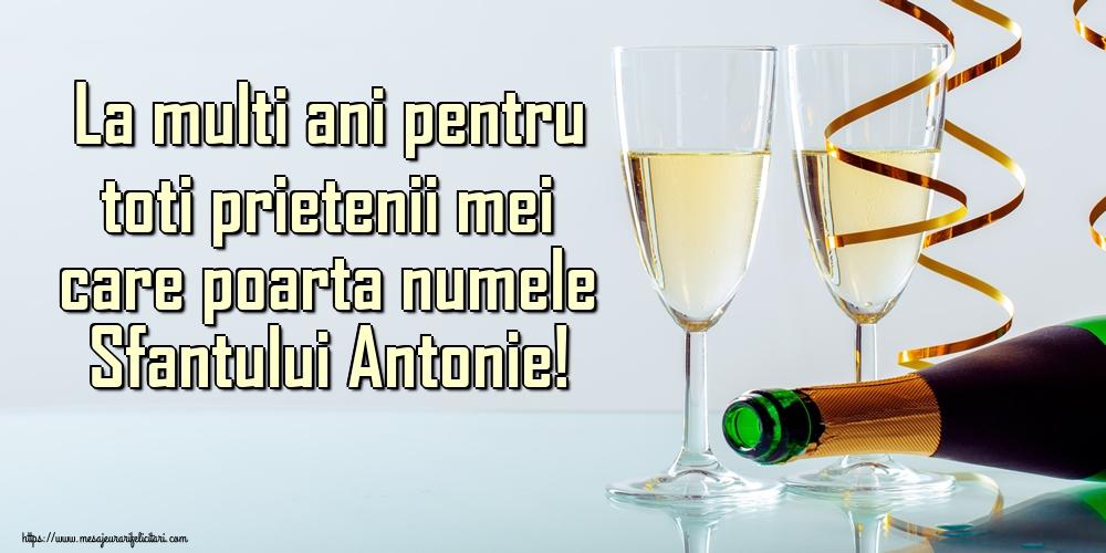 Felicitari de Sfantul Antonie cel Mare - La multi ani pentru toti prietenii mei care poarta numele Sfantului Antonie!