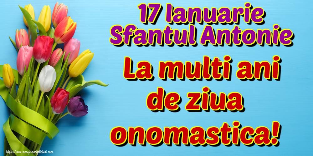 Cele mai apreciate felicitari de Sfantul Antonie cel Mare - 17 Ianuarie Sfantul Antonie La multi ani de ziua onomastica!