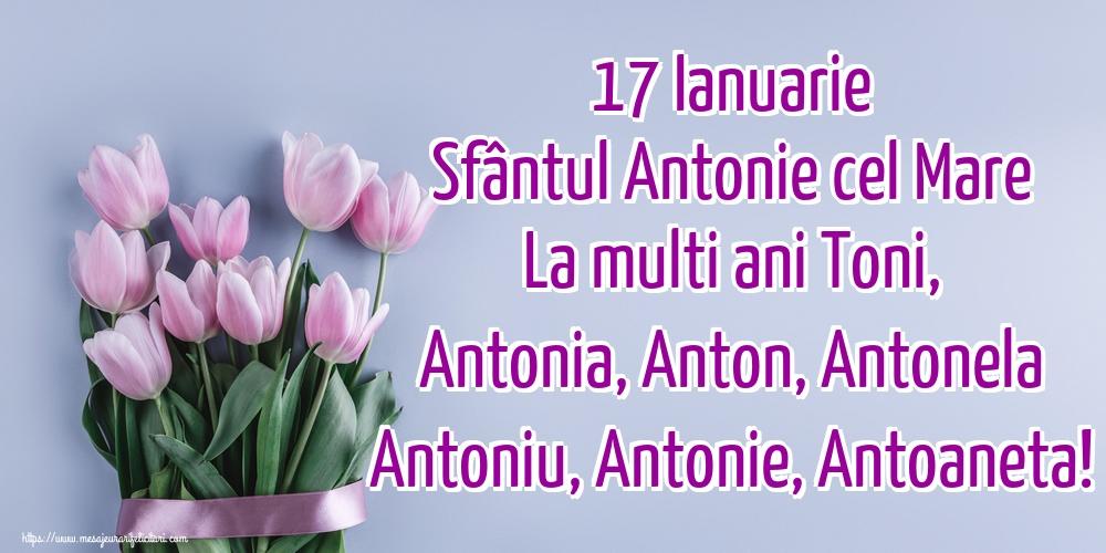 Sfantul Antonie cel Mare 17 Ianuarie Sfântul Antonie cel Mare La multi ani Toni, Antonia, Anton, Antonela Antoniu, Antonie, Antoaneta!