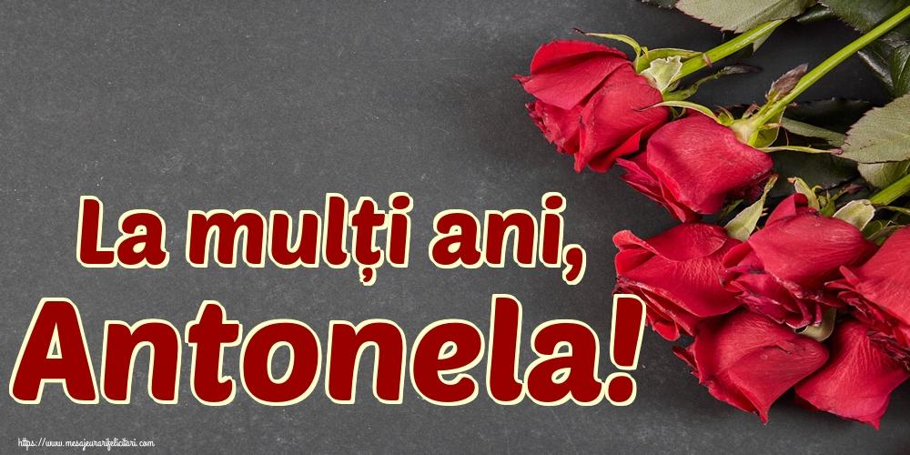 Cele mai apreciate felicitari de Sfantul Antonie cel Mare - La mulți ani, Antonela!