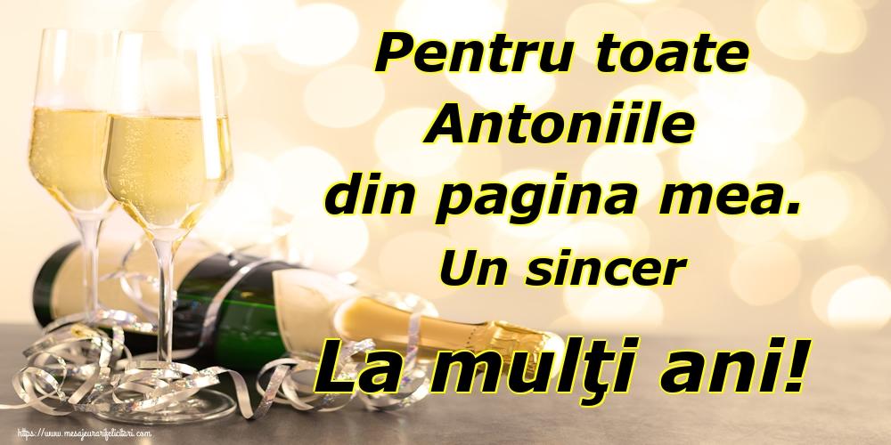 Cele mai apreciate felicitari de Sfantul Antonie cel Mare - Pentru toate Antoniile din pagina mea. Un sincer La mulţi ani!