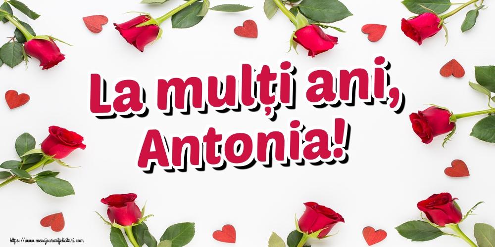 Felicitari de Sfantul Antonie cel Mare - La mulți ani, Antonia! - mesajeurarifelicitari.com