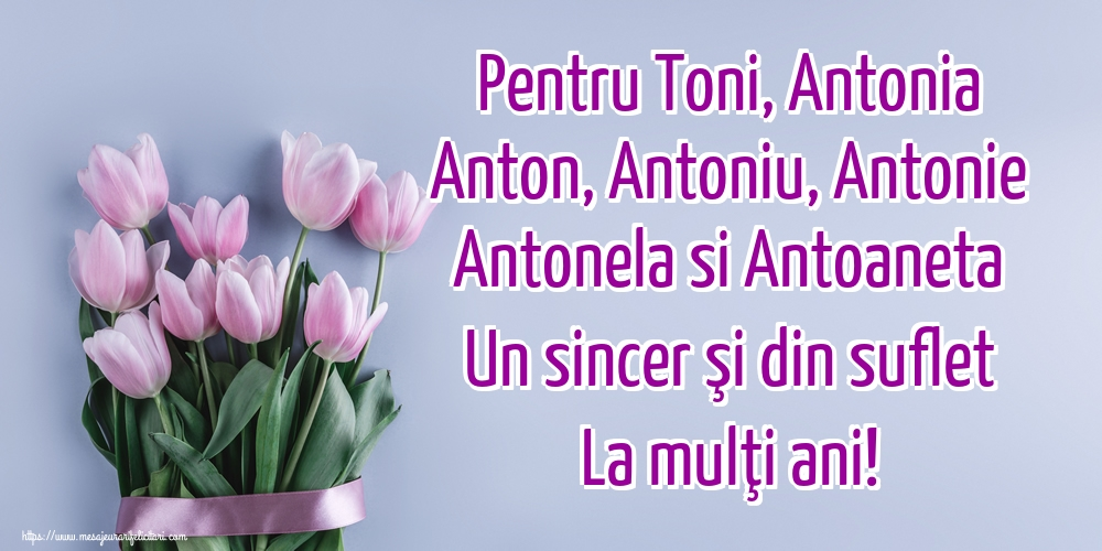 Sfantul Antonie cel Mare Pentru Toni, Antonia Anton, Antoniu, Antonie Antonela si Antoaneta Un sincer şi din suflet La mulţi ani!