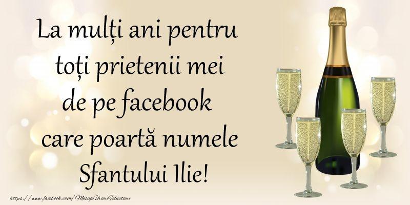 Sfantul Ilie La multi ani pentru toti prietenii mei de pe facebook care poarta numele Sfantului Ilie!