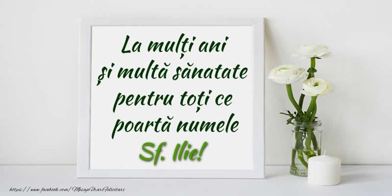 Felicitari de Sfantul Ilie - La multi ani  si multa sanatate pentru toti cei ce poarta numele Sf. Ilie!