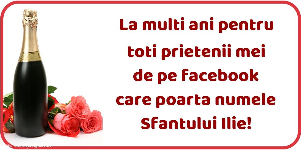 Felicitari de Sfantul Ilie - La multi ani pentru toti prietenii mei de pe facebook care poarta numele Sfantului Ilie! - mesajeurarifelicitari.com
