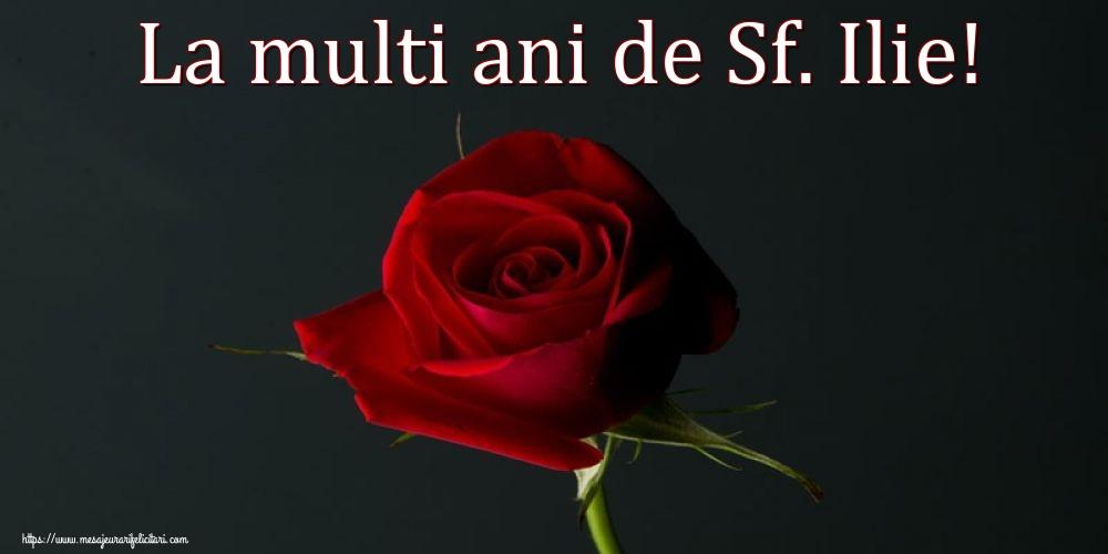 Felicitari de Sfantul Ilie cu flori - La multi ani de Sf. Ilie!