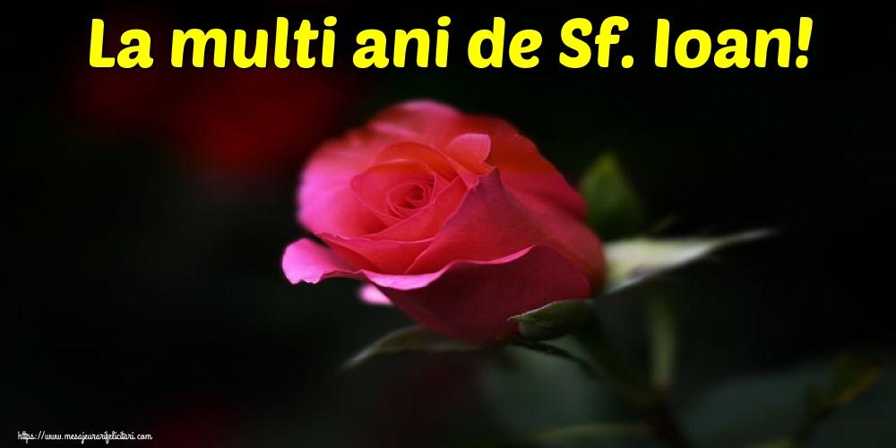 Felicitari de Sfantul Ioan cu flori - La multi ani de Sf. Ioan!