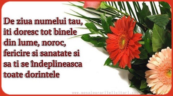 Felicitari de Sfantul Ioan - De ziua numelui tau, iti doresc tot binele din lume, noroc, fericire si sanatate ...