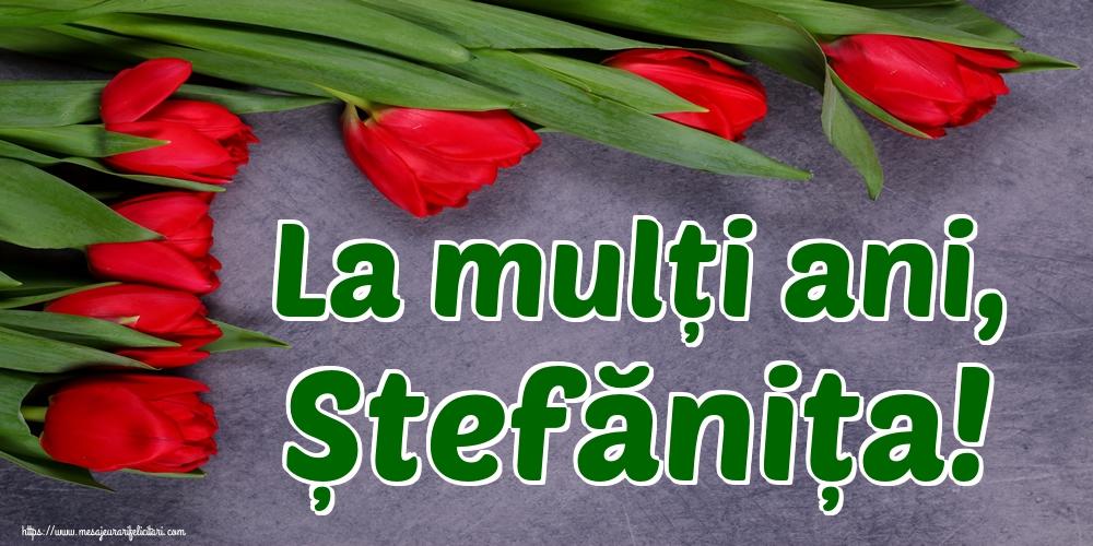 Felicitari de Sfantul Stefan - La mulți ani, Ștefănița!