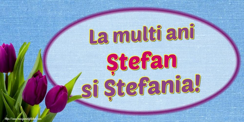 Felicitari de Sfantul Stefan - La multi ani Ștefan si Ștefania!