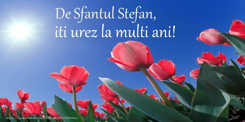 Felicitari de Sfantul Stefan - De Sfantul Stefan, iti urez La multi ani!
