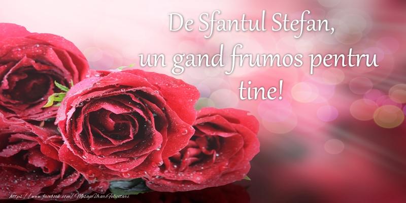 Felicitari de Sfantul Stefan - De Sfantul Stefan, un gand frumos pentru tine!