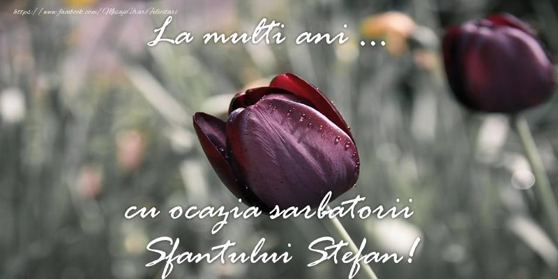Felicitari de Sfantul Stefan - La multi ani ... cu ocazia sarbatorii Sfantului Stefan!
