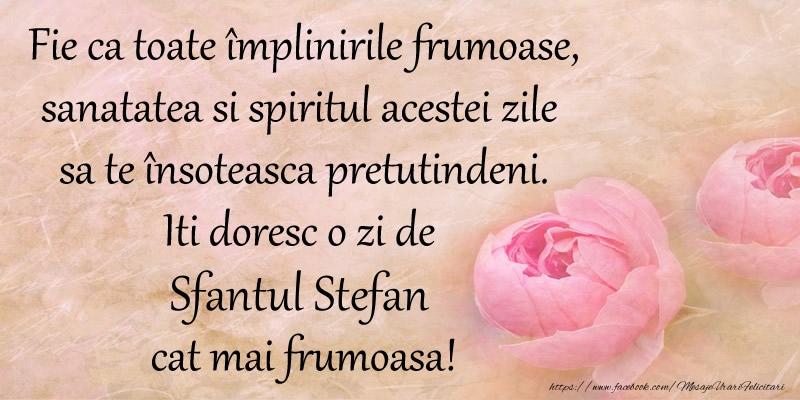 Felicitari de Sfantul Stefan - Fie ca toate implinirile frumoase, sanatatea si spiritul acestei zile sa te insoteasca pretutindeni. Iti doresc o zi de Sfantul Stefan cat mai frumoasa!