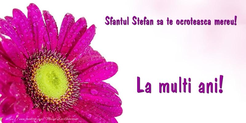Felicitari de Sfantul Stefan - Sfantul Stefan sa te ocroteasca mereu! La multi ani!